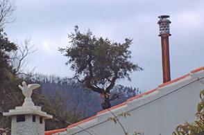 Windkat Energieeinsparung1